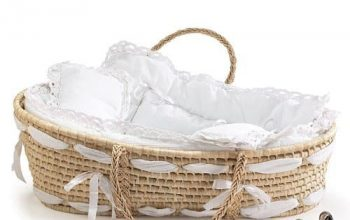 Best Moses Basket for Baby (Customer Review 2020)